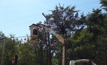 El Municipio reparó las luminarias del barrio San Jorge