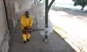 La descacharrización también previene el Zika