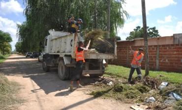 Dengue: operativo de descacharrización en La Josefa