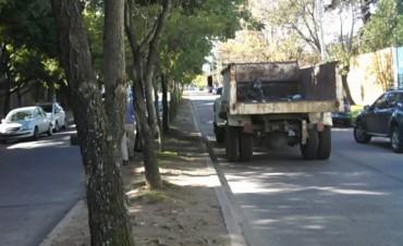Personal Municipal trabaja en el acondicionamiento y limpieza de los parterres de la Ciudad