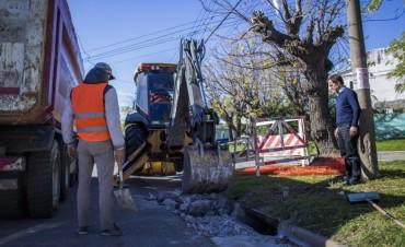 Siguen las obras en la ciudad: ahora el Municipio inició la repavimentación del boulevard Dellepiane