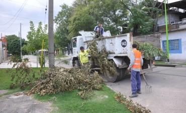 Feriado: se recolectarán los residuos pero no se retirarán montículos verdes