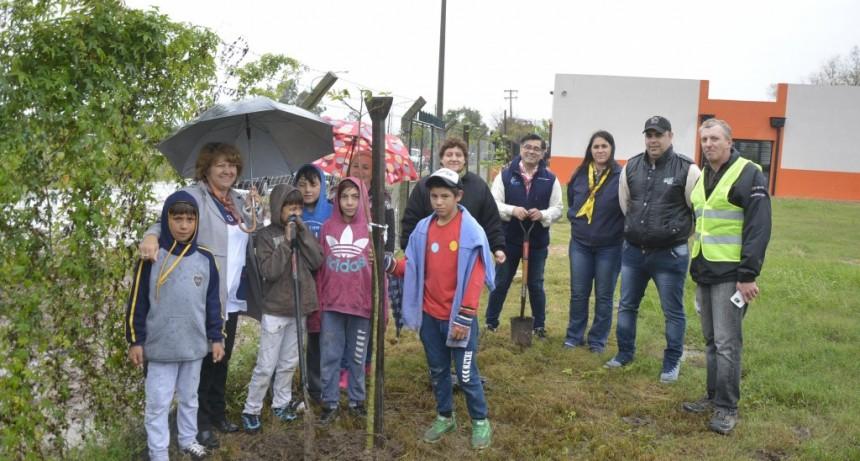 Medio Ambiente plantó 125 árboles en San Cayetano