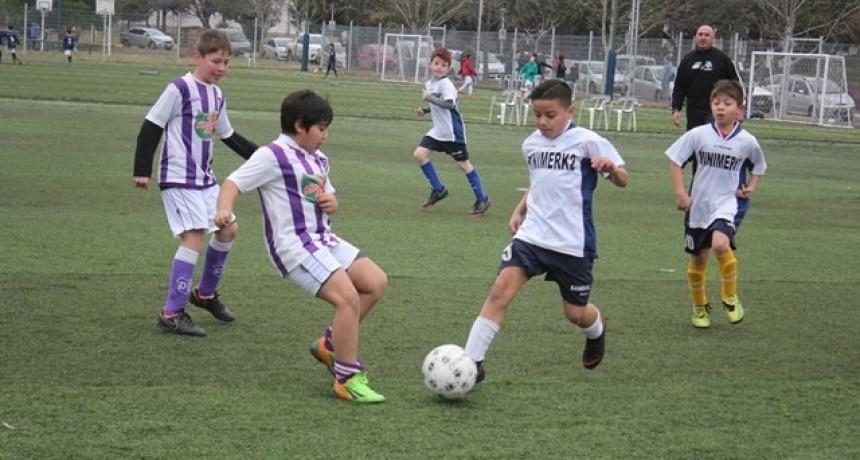 La Escuela Municipal de Fútbol Infantil tuvo una destacada actuación en el CCC
