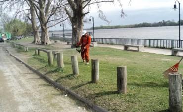 Obras y Servicios Públicos realizó tarea de corte de pastos y limpieza en la zona del Paseo Costanero