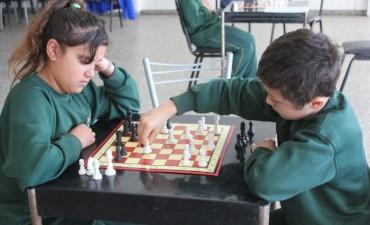 Niños y jóvenes pueden aprender gratis ajedrez