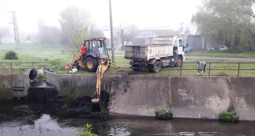Coletta y Balcarce: limpian el canal y recuperan el espacio verde de la zona