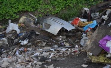 Vuelven a limpiar un basural ilegal en la Av. Ricardo Rojas