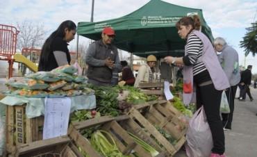 """Los Productores Locales regresan el martes a la Plaza """"1° de Mayo"""""""