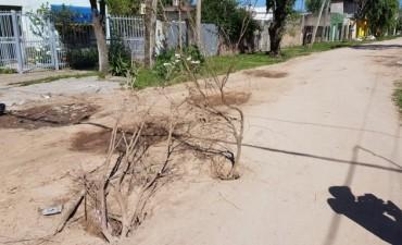 Vecinos de distintos barrios reclaman al Municipio el arreglo de calles