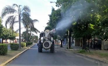 """""""Gatas peludas"""": el Municipio fumigará el interior de escuelas y jardines de infantes públicos"""