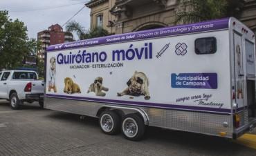 Quirófano móvil: informan el cronograma de castraciones gratuitas durante el verano