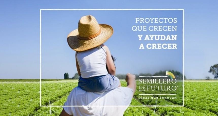 Semillero de Futuro lanza su edición 2019 para apoyar proyectos de alto impacto social