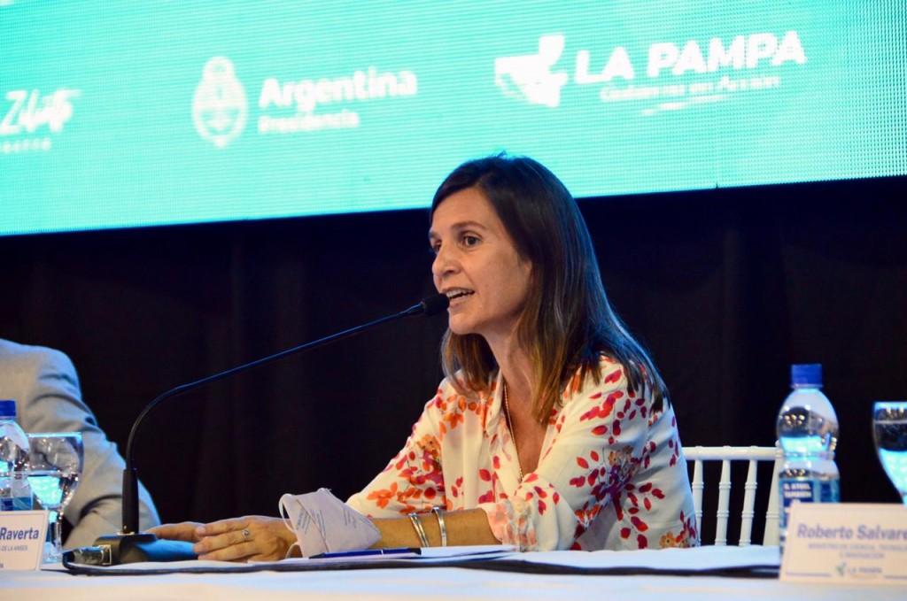 Convenios provinciales  LA ANSES TRANSFIRIÓ MÁS DE 40 MIL MILLONES DE PESOS A LAS PROVINCIAS