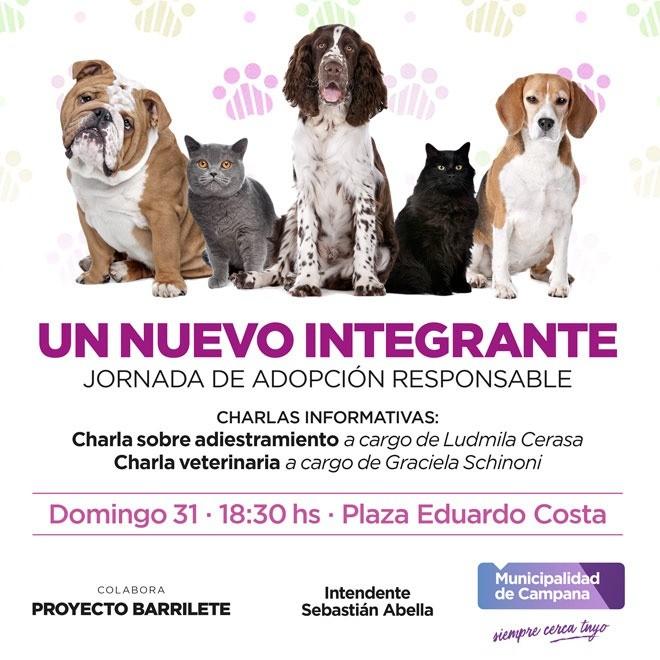 El domingo se realizará una nueva jornada de adopción responsable de mascotas