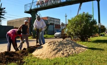 Personal Municipal restablece el sistema de alumbrado público en la Av. 6 de Julio