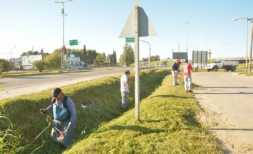 Cuadrillas Municipales refuerzan las tareas de limpieza en la Ciudad