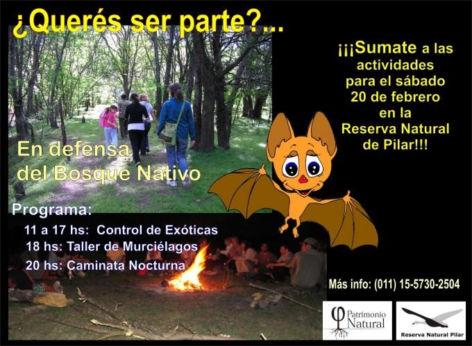 ¡En Defensa del Bosque Nativo!