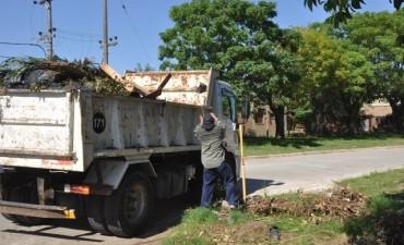 Continúan los operativos de descacharrización en los barrios de la ciudad
