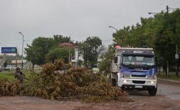El Municipio realizó trabajos de limpieza por las lluvias