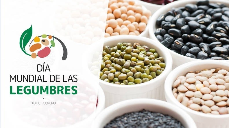 Destacan la importancia de las legumbres para lograr una alimentación saludable
