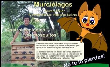 La Asociación Patrimonio Natural invita a una especial actividad con murciélagos