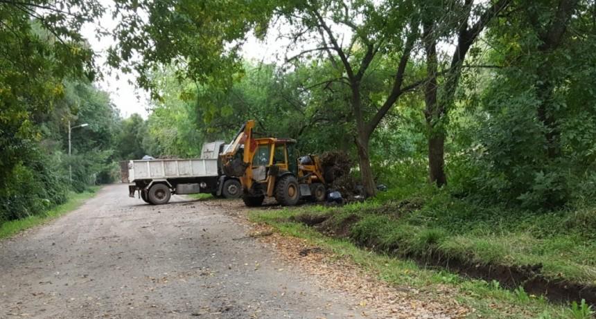 Se realizaron tareas de limpieza en Parque Natura y La Herradura