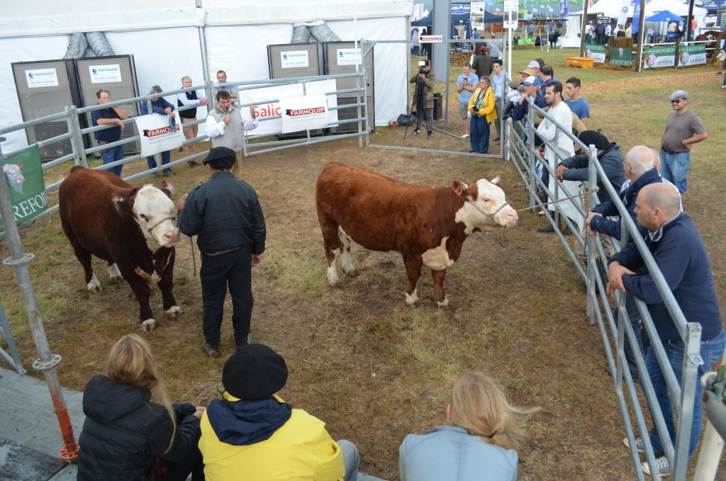 Expoagro 11 de marzo : Hacia una ganadería con visión de futuro y proyección mundial