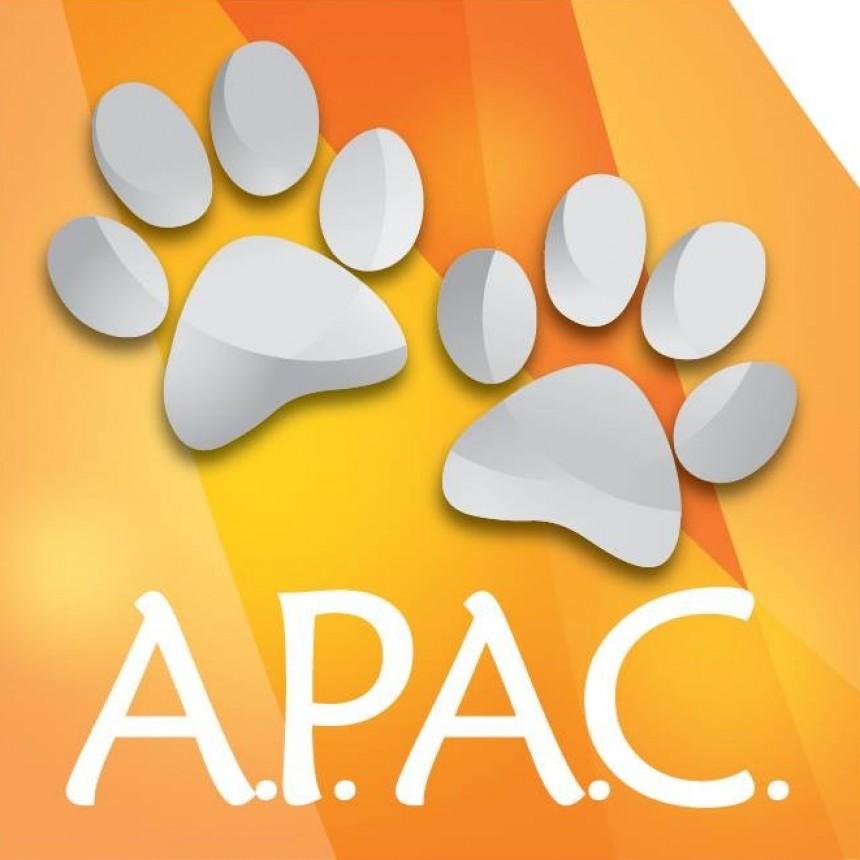 Asociación Protectora de Animales Campana realiza un trabajo importante para las mascotas perdidas