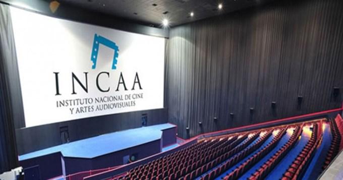 Echan al titular del INCAA por irregularidades