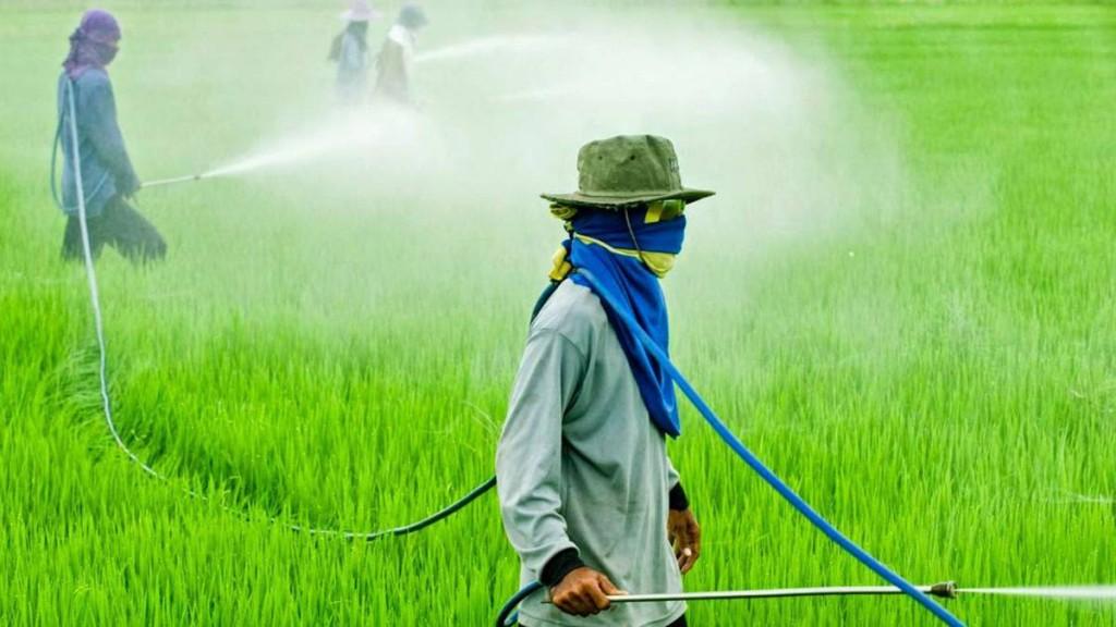 La Agencia de Protección Ambiental de los Estados Unidos (EPA) reafirma que el glifosato no es carcinógeno