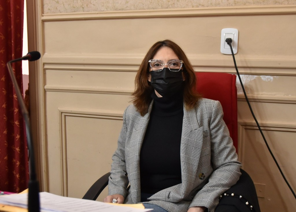 Sala pidió a Provincia que transportistas escolares sean eximidos del pago de la VTV