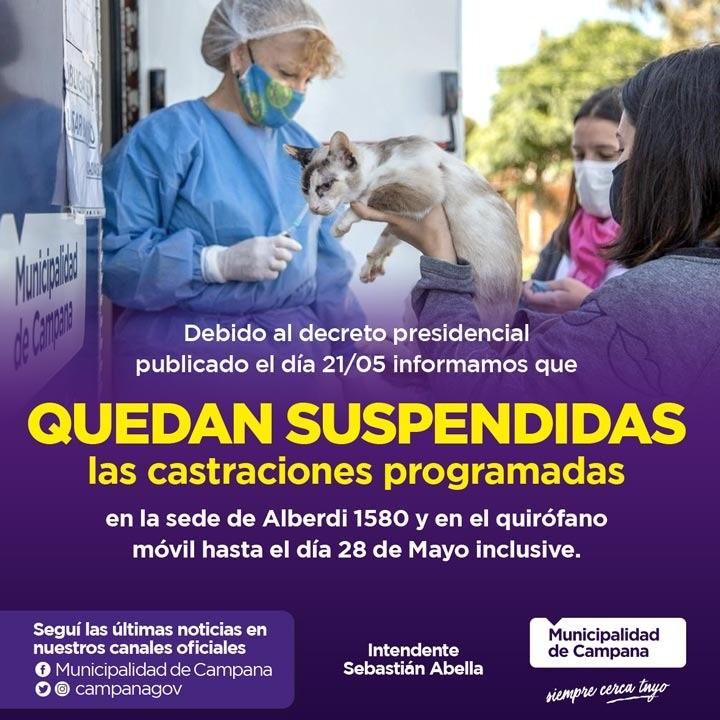 Por el confinamiento, suspenden las castraciones de mascotas