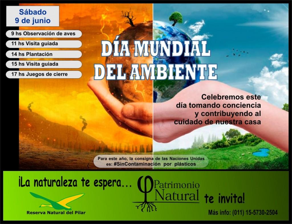 Este 9 de junio se celebra el Dìa Mundial del Ambiente