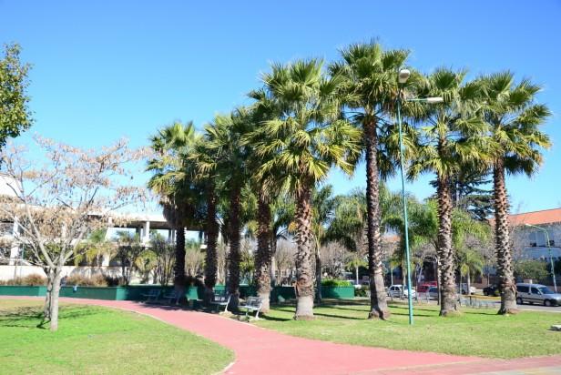 Tenaris realizó tareas de mantenimiento en el Parque Urbano