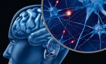 Se realizará una charla gratuita sobre neurociencias y PNL