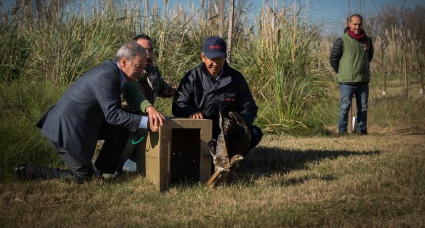 Toyota consolida su proyecto educativo ambiental en Zárate