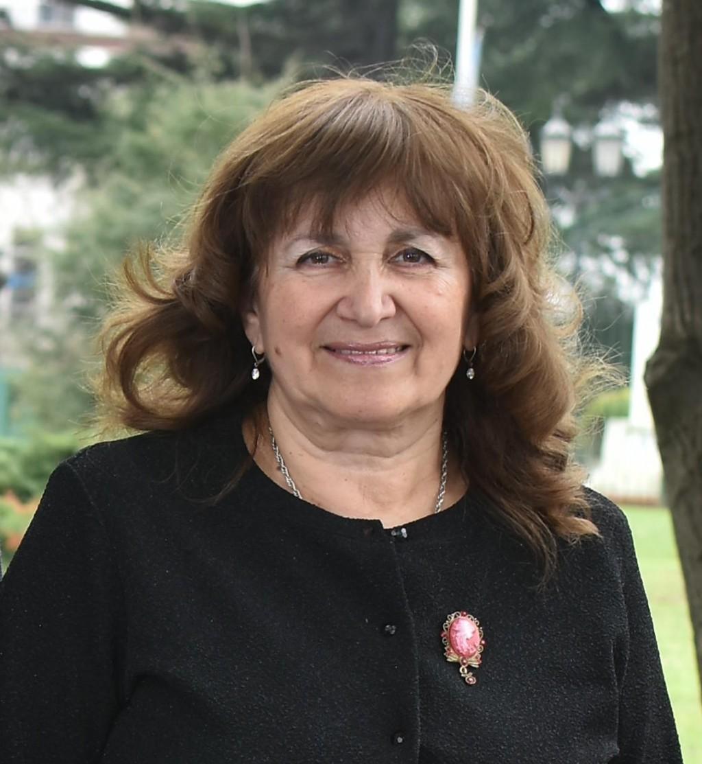 Rosa Funes: siguen destruyendo nuestra cartelería política