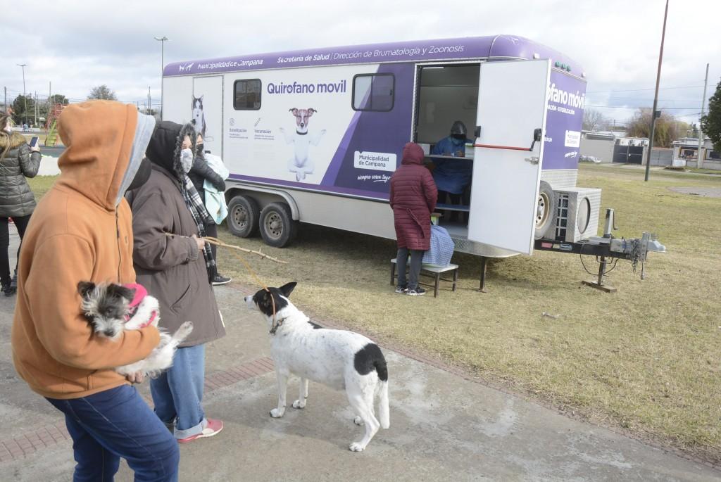 Comenzó la campaña de vacunación antirrábica para mascotas