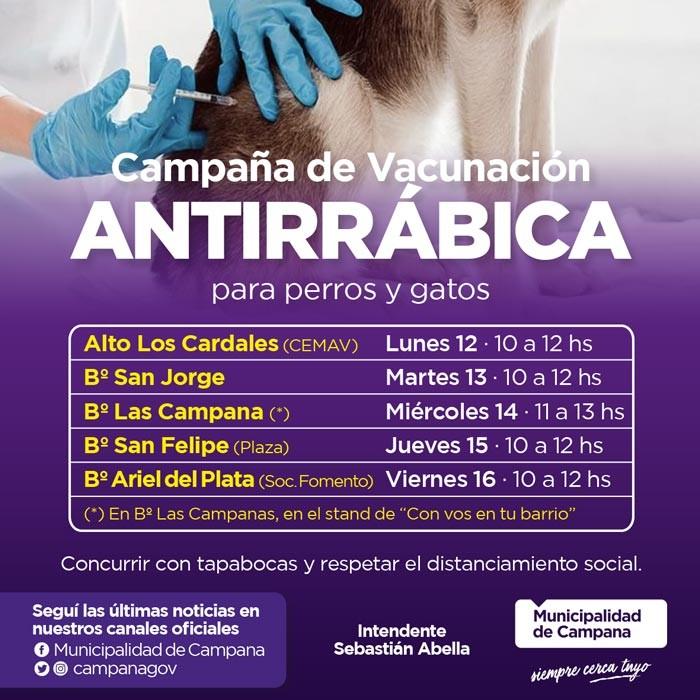 Vacunación antirrábica: informan el cronograma de la semana próxima