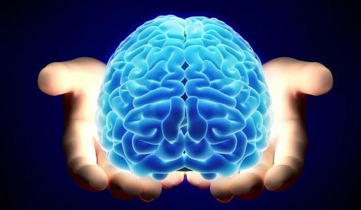 ¿Cómo mantener un cerebro saludable y activo?