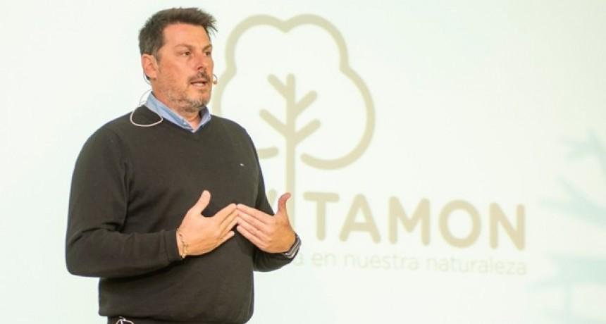 En la primera edición del programa REVITAMON se plantaron 4.000 árboles en la Yunga tucumana