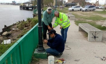 Costanera: el Municipio trabaja en la reparación de luminarias