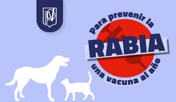 28 de septiembre - Día Mundial de la Rabia : Para prevenir la rabia, una vacuna al año