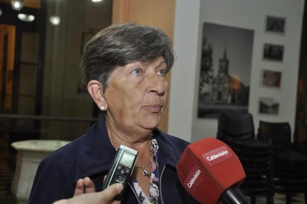 """Felisa Díaz  """"Los subsidios provinciales se van a cobrar"""""""