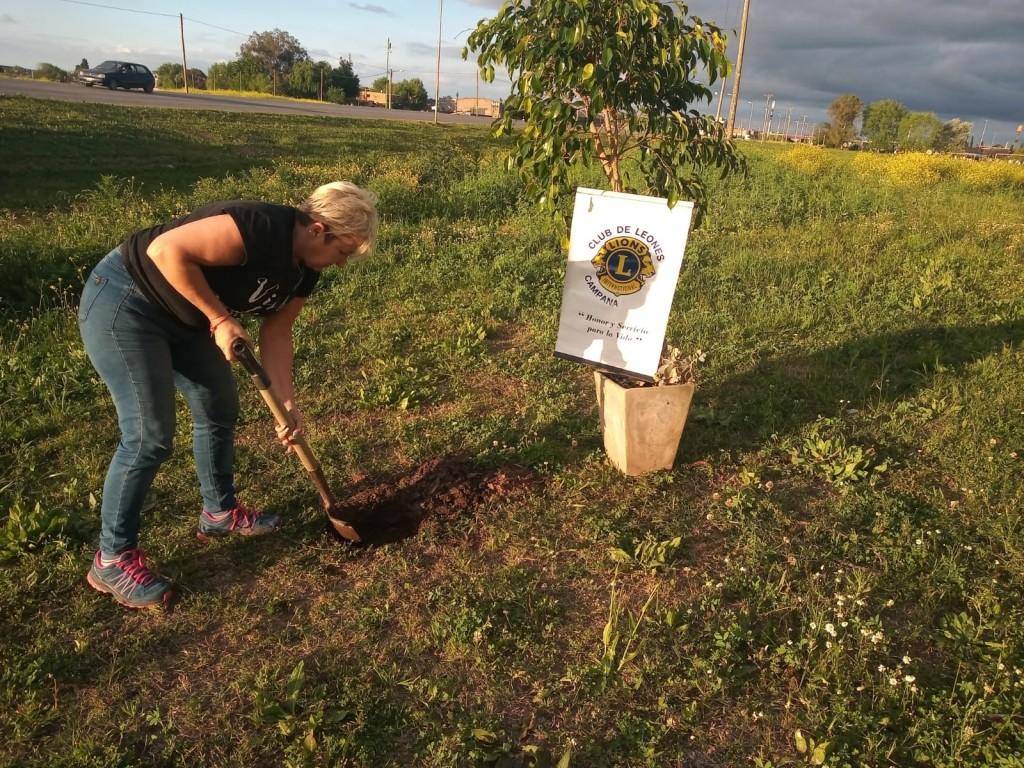 El Club de Leones de Campana plantó un árbol en el Barrio 104