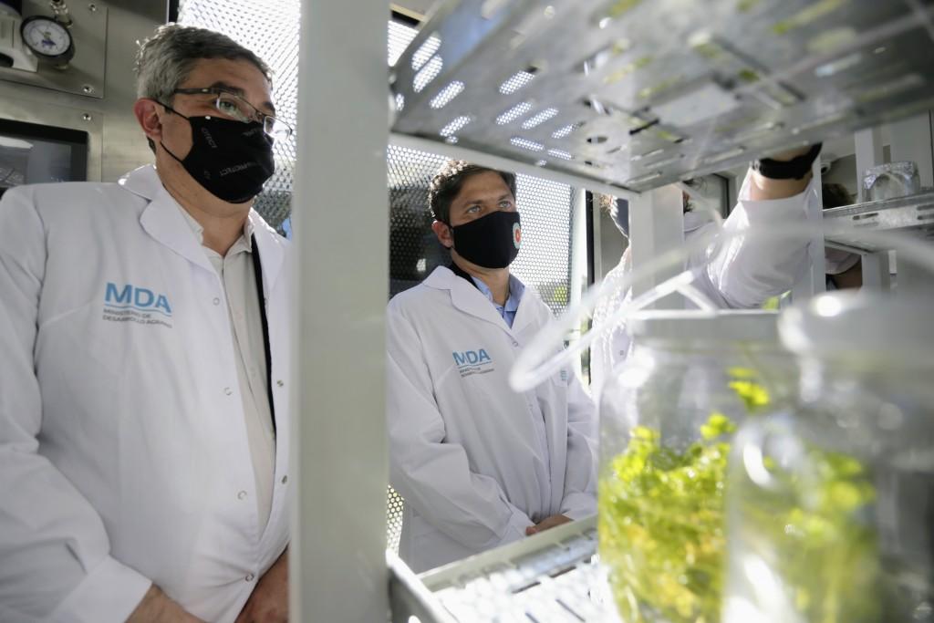 DESARROLLO AGRARIO : Kicillof inauguró un laboratorio de multiplicación vegetal en Mercedes