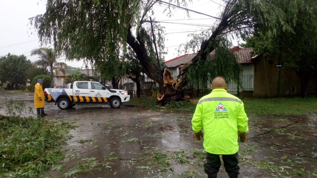 Intensos trabajos del Municipio tras el fuerte temporal