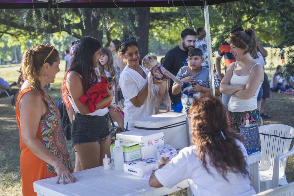 Se realizará una nueva jornada de adopción de animales en la plaza Eduardo Costa