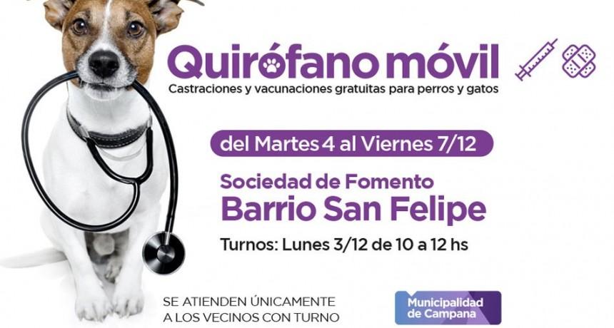 El quirófano móvil realizará castraciones en San Felipe